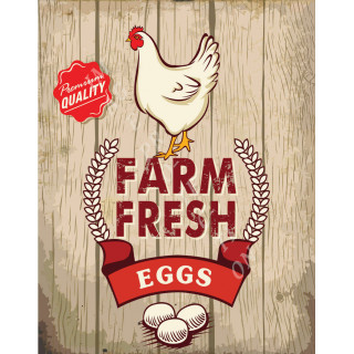 Farm Fresh Eggs  vintage food metal tin sign poster