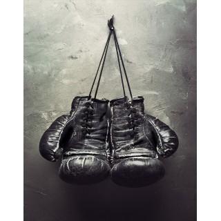 Boxing Tin Signs