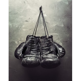 Boxing Championship metal tin signs
